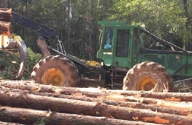 Skidder moving logs out of forest